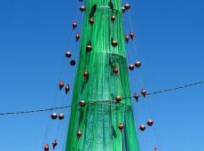Acil - Árvore de Natal